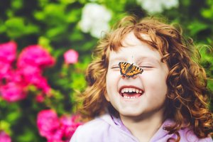 Butterfly Kit
