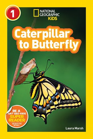 National Geographic: Caterpillar to Butterfly