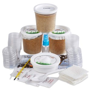 Nature Gift Store Live Butterfly Refill Kit